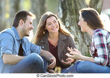Three friends talking sitting in a park - Three happy...