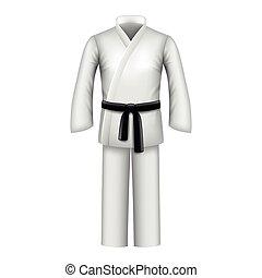 Karate kimono isolated on white vector - Karate kimono...