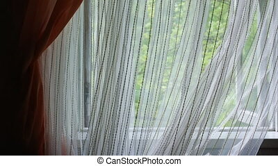 White sheer curtain blowing in the wind