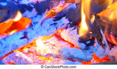 Detail of blue fire of burning hardwood. Burning woods in...