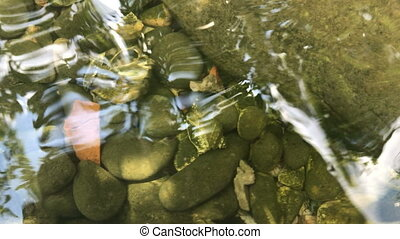 beautiful stones lie beneath clear water close-up
