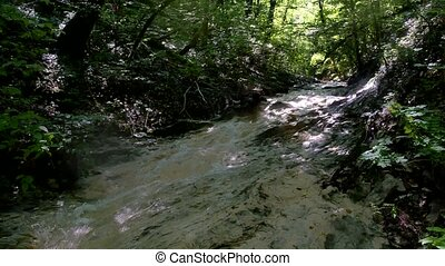 small mountain river with water rocks. River in the...