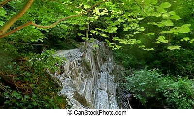 Mountain forest cliffs. Mountain river flows nature...
