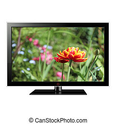 LCD TV with tulip on screen