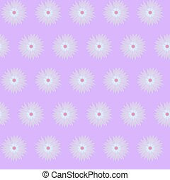Violet purple flower cornflower isolated on white...