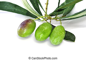 olives bunch