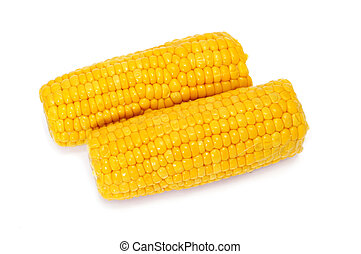 corncobs - a pair of corncobs isolated on a white background