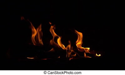 Big flames in wooden campfire. 240 fps slow-motion.