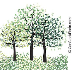 Green trees with leaves - Vector illustration of green...