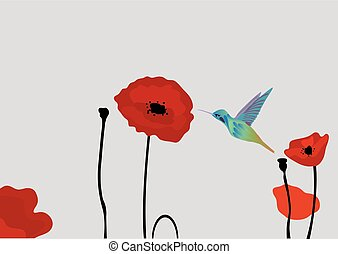 poppies - vector poppies and hummingbird
