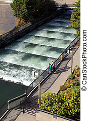Fish ladders Bonneville Dam, Oregon - A view point of the...