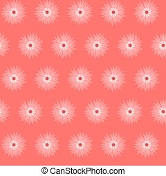 Red pink flower cornflower isolated on white background....