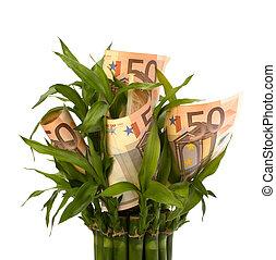 Money growing concept Money banknotes growing in flowerpot...