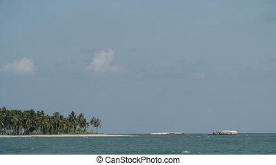 Beach island with palm tree and blue sky