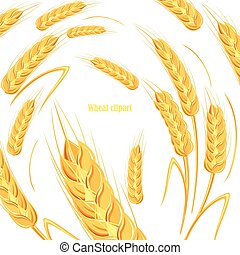 Template for bread design. Banner for beer label, cereal products. Vector illustration.