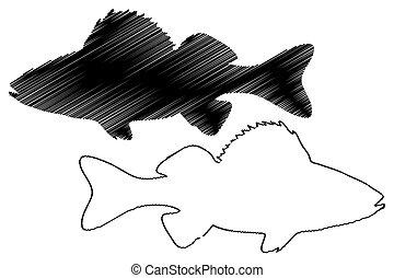 perch silhouette vector, (Perca fluviatilis),
