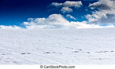 Snow landscape - A landscape with snow. The sky is beaming...
