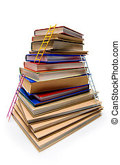 stack of books with ladders isolated on white, educational...