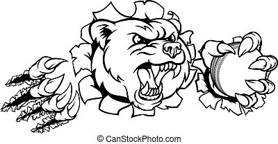 Bear Holding Cricket Ball Breaking Background - A bear angry...