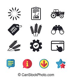 Agricultural icons. Wheat corn or Gluten free. -...