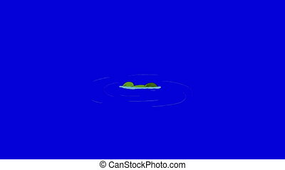 Frog Dive into the Water isolated on Blue Screen - Frog Dive...