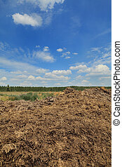 Natural fertilizer, cow dung in field - Heap of cow dung...