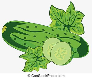 Vegetable ripe cucumber