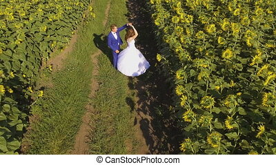 Couple in love walking next to sunflower field on summer...