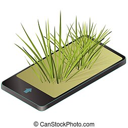 Vector isolated reed. Water plants in different variants,...