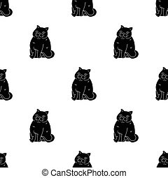 Exotic Shorthair icon in black style isolated on white...