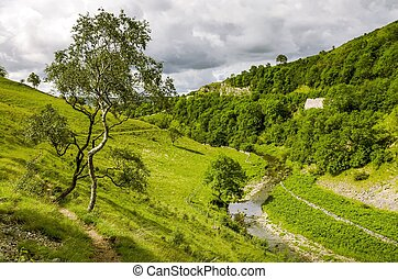 A view of Smardale Gill, Cumbria. - View of Smardale Gill, a...