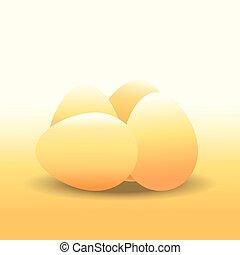 Eggs , chicken egg , vector illustration