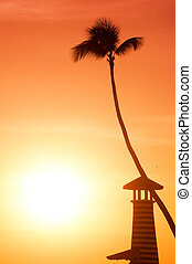 Lighthouse and palm tree on the background of an orange sunset