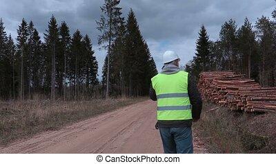 Lumberjack checking a log pile