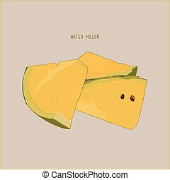 yellow water melon , sketch vector.
