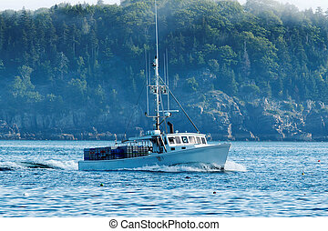 A lobster boat heads out to set his traps - A white lobster...