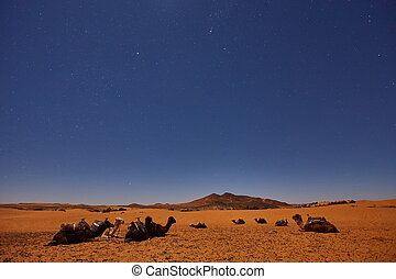 Camp in Sahara Desert in night with moon as star and moving...