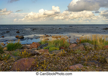 The coast of the Baltic Sea in the north - Dunes of the...