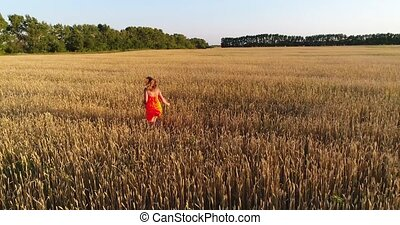 A young girl in a dress running through the field of wheat....