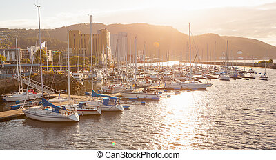 view of a marina in Trondheim