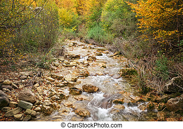 Beautiful autumn landscape with mountain river. Forest in Crimea.