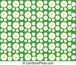 Chamomile on a green background