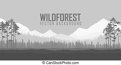 Wild coniferous forest background. Pine tree, landscape...
