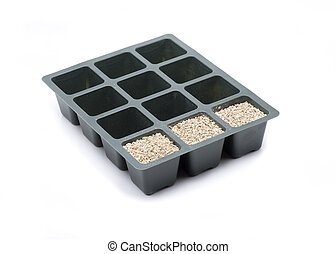 hotbed verliculite - Several seedlings where to plant our...