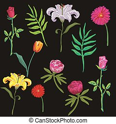 collection of colorful flowers. Vector illustration. - Big...