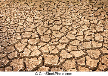 polygons of desiccation caused by drought - brown texture of...