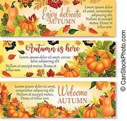 Autumn banner with pumpkin, fallen leaves, berry - Autumn...