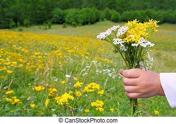 Children hand hold flowers in spring meadow - Children hand...