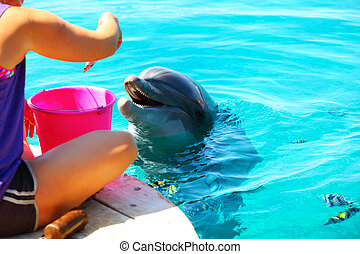 Woman feeds a smiling dolphin in a water.