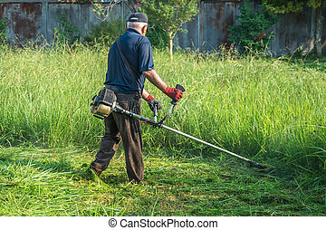 The gardener cutting grass by lawn mower.